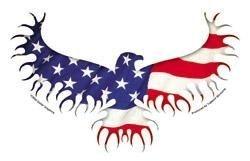 Eagle Flag Sticker