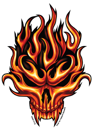 Flame Skull Sticker 4 75 Quot X 6 Quot Silver Skull And Red Rose Ebay
