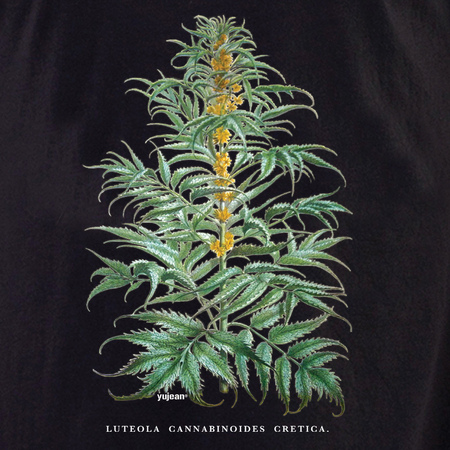 Curiosities Cannabis Plant Tote | Cabinet of Curiosities