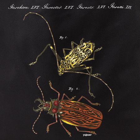 Curiosities Bugs Tote | Cabinet of Curiosities