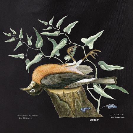 Curiosities Dead Bird Tote | Tote Bags