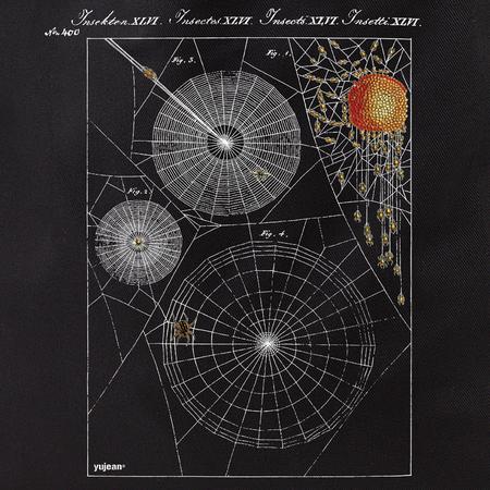 Curiosities Spiderweb Tote | Tote Bags