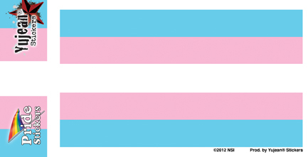Transgender Pride Flag | Window Stickers: Clear Backing, Put Them Anywhere!