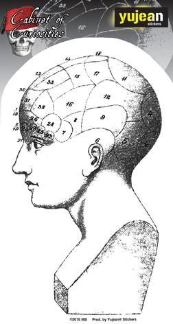 Cabinet of Curiosities Phrenology Head Sticker | Cabinet of Curiosities