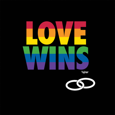 Love Wins shirt | T-Shirts and Hoodies