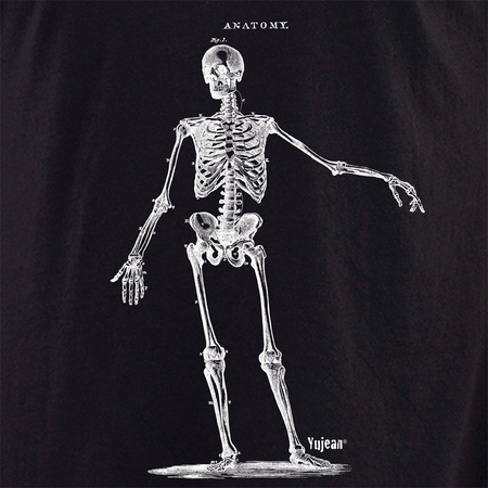 Skeleton 3 shirt | Cabinet of Curiosities