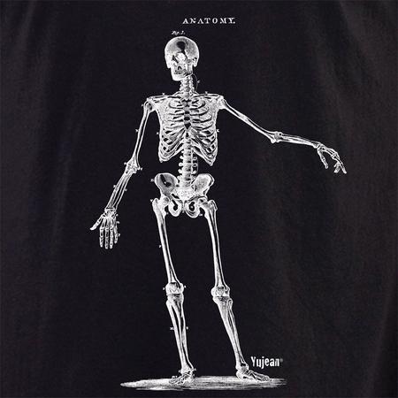 Skeleton 3 shirt   Cabinet of Curiosities
