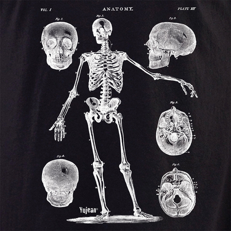 Skeleton 4 Shirt | Cabinet of Curiosities