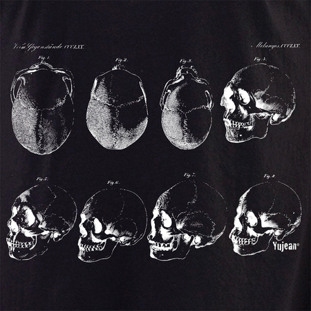Skeleton 6 Shirt | The Very Latest Shirts, Totes and Button Boxes!!