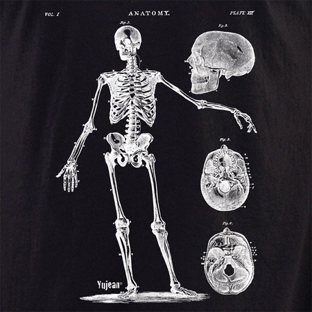 Skeleton 7 Shirt | Cabinet of Curiosities