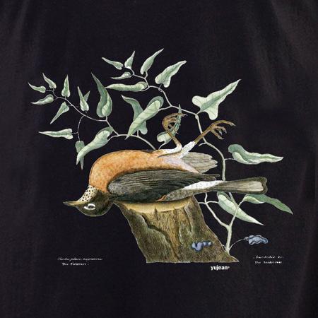 Curiosities Dead Bird Shirt | T-Shirts