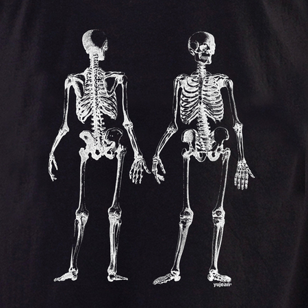 Curiosities Skeleton front/back Shirt | The Very Latest Shirts, Totes and Button Boxes!!