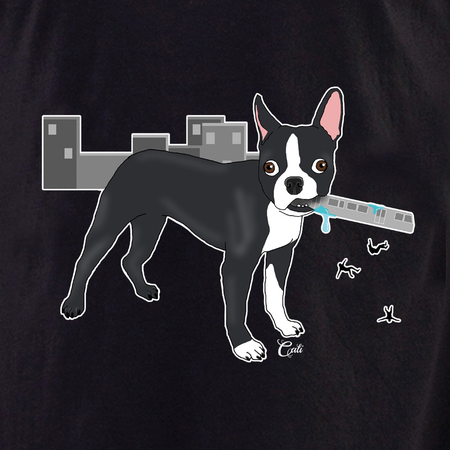 Cali Boston in the City Shirt | T-Shirts and Hoodies