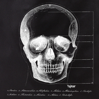 Skull Face Tote