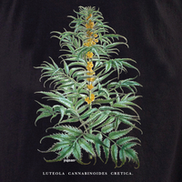 Curiosities Cannabis Plant Tote