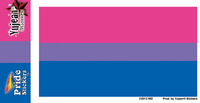 Bi Pride Flag Sticker | Matt Stewart