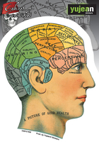 Cabinet of Curiosities Phrenology Sticker