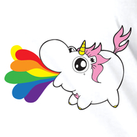 Emi Boz Chubby Unicorn Rainbow T shirt