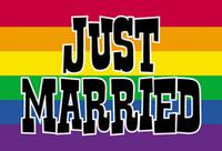 Pride Rainbow Just Married  postcard