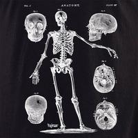 Skeleton 4 Shirt