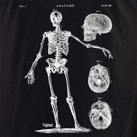 Skeleton 7 Shirt