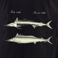 Curiosities Fish Skeleton Shirt