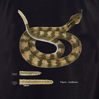 Curiosities Rattlesnake Shirt