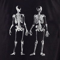 Curiosities Skeleton front/back Shirt