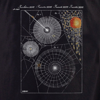 Curiosities Spiderweb Shirt